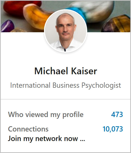 Link to Michael Kaiser's LinkedIn profile